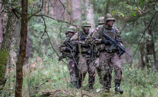 В 2021 году армия Польши планирует поставить под ружьё 200 тыс. резервистов